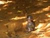 20110314_151802_sue